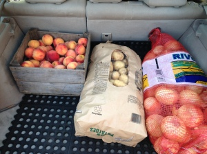 Our Prius, all loaded.  Not so much stuff this time, just a big bag each of Onions and Potatoes, plus a case of fresh local peaches.